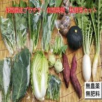 自然農法・自然栽培野菜セット、宅配