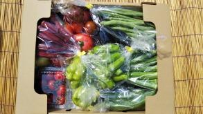 自然農法野菜セット