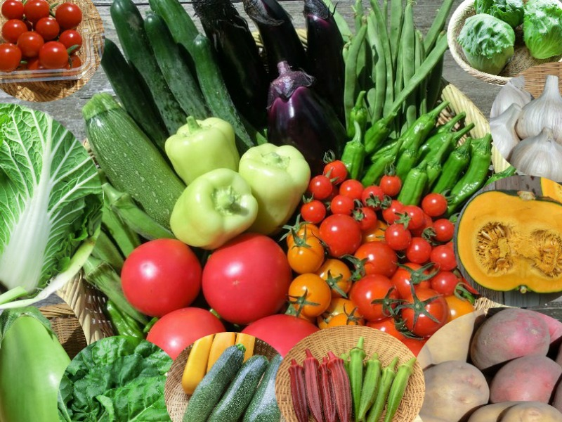 岩手から自然栽培野菜セットを宅配