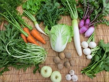 自然農法野菜