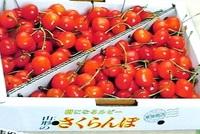 佐藤錦 バラ詰 1kg