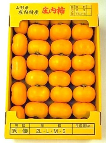 庄内柿 5kg規格