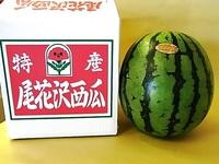 尾花沢西瓜 6L
