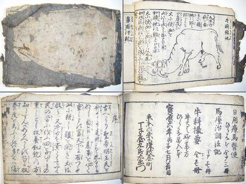 江戸 和本 獣医 牧畜 絵入り多数『牛 科 重宝 記』木版画