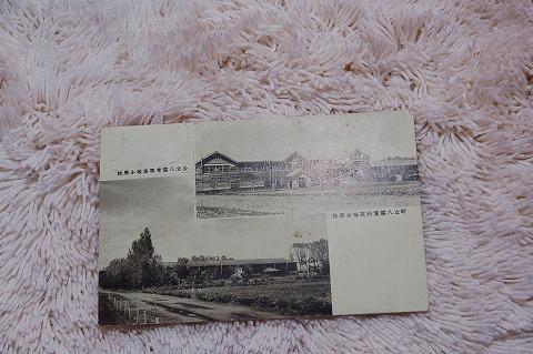 日本絵葉書『公立八雲尋常高等小学校』戦前