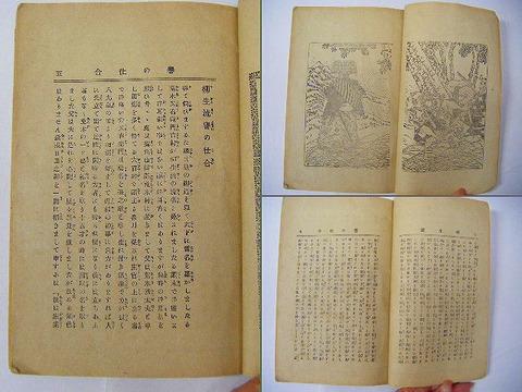 明治 文学 時代劇 小説「誉の仕合 柳生 旅日記 」