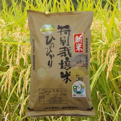 特別栽培米(5kg)ひのひかり