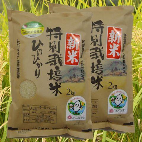 特別栽培米(2kg)ひのひかり× 2個