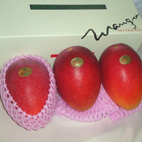 完熟マンゴー白箱(3玉入)