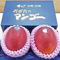 完熟・宮崎 おがたのマンゴー
