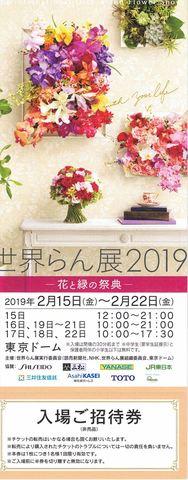 世界らん展2019 ー花と緑の祭典ー 特別前売り券