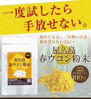 【ラッキーSALE】屋久島春ウコン粉末(100g)ポスト投函