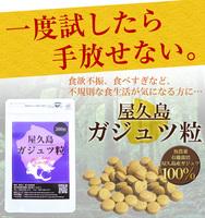【定期購入】屋久島紫ウコン(ガジュツ)粒(300粒)ポスト投函