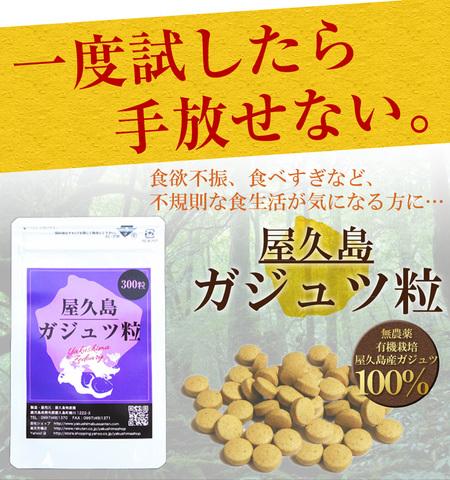屋久島紫ウコン(ガジュツ)粒(300粒)ポスト投函