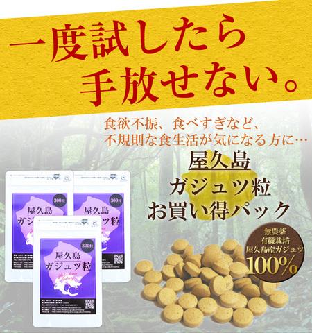 屋久島ガジュツ粒(300粒)お買い得パック(3袋セット)