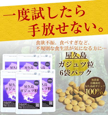 屋久島ガジュツ粒(300粒)6袋パック