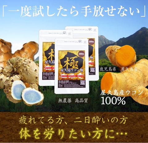 屋久島ウコン極(300粒)3袋セット(2月中旬より出荷)