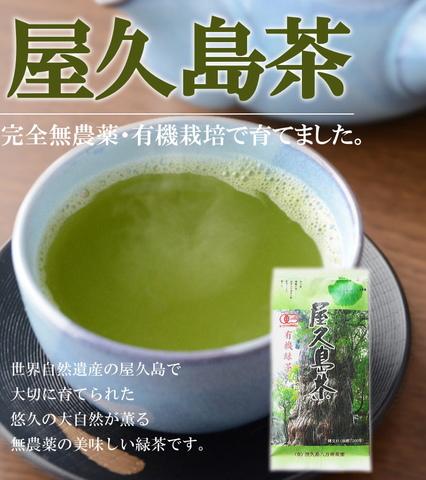 【ラッキーSALE】屋久島茶(メール便限定)
