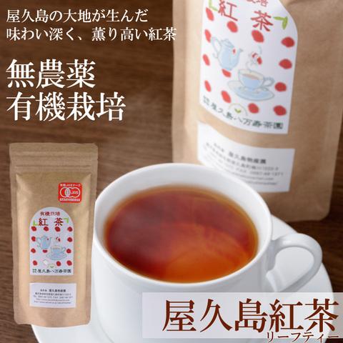 屋久島紅茶(リーフティー)
