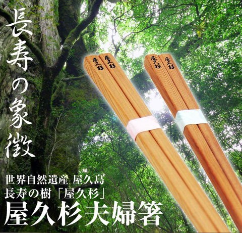 屋久杉夫婦箸