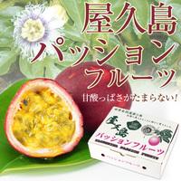 屋久島産パッションフルーツ
