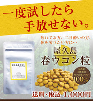 屋久島春ウコン粒(100粒)
