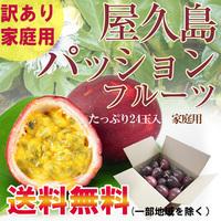 【家庭用】屋久島産パッションフルーツ