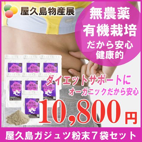 屋久島紫ウコン(ガジュツ)粉末(100g)7袋セット