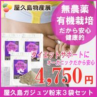 屋久島紫ウコン(ガジュツ)粉末(100g)3袋セット(ポスト投函限定)