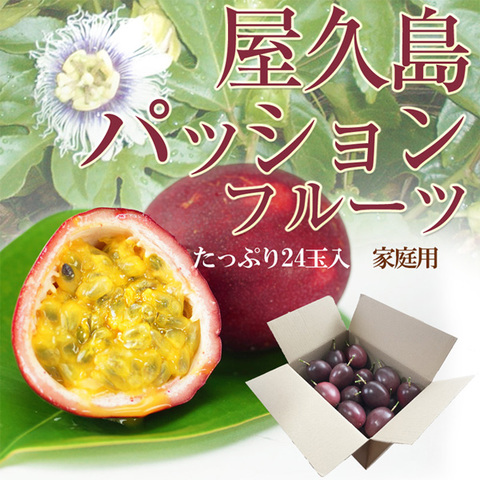 【家庭用】屋久島産パッションフルーツMサイズ24玉入り