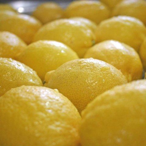 LAS132 レモンジャム 132g