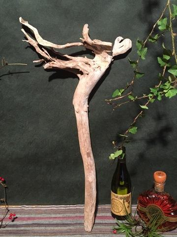 変形流木中型