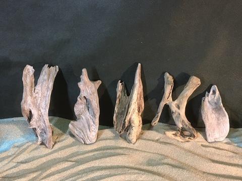 流木カケラ