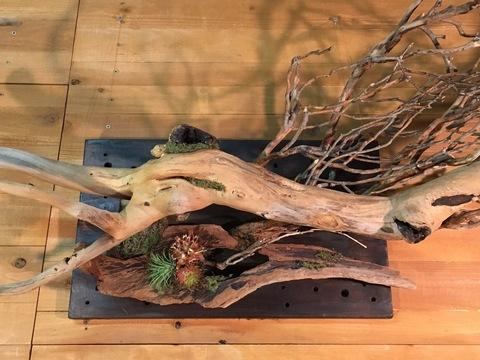 流木アート壁面設置用