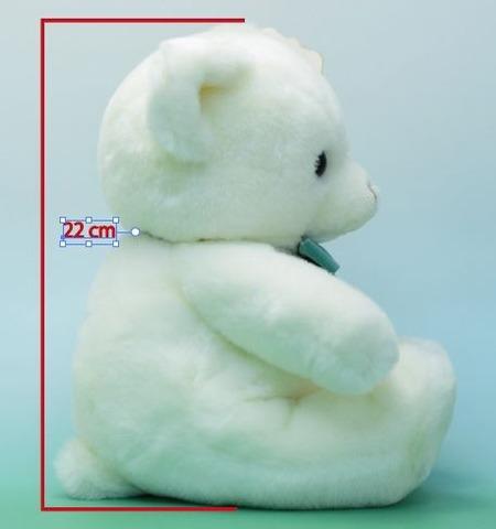 座高22cm(個体差あり)