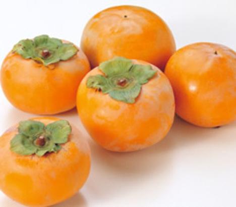 富有柿<優・5kg・3Lサイズ>