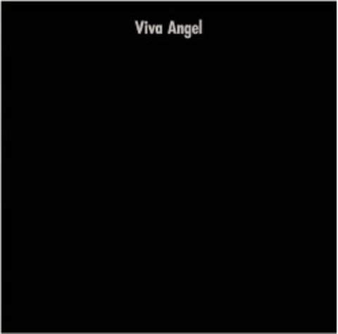 非常階段 / VIVA ANGEL + 1 NOISE