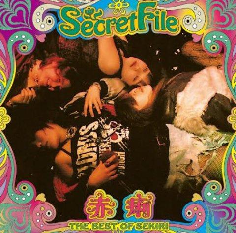 赤痢/Secret File~THE BEST OF SEKIRI~
