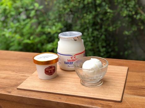 オリジナルアイスクリーム<ソルベ> 4個入
