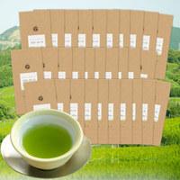 茶和家カテキンまるごと深蒸し掛川茶100g30本【2割引】 送料無料