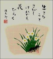 色紙1水仙・冬・吉岡浩太郎