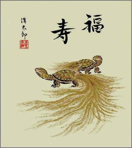 色紙49亀・吉岡浩太郎