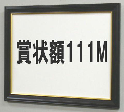 賞状額111M A3OA(額縁内サイズ422X299ミリ)