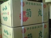 愛媛クヌギ囲炉裏火鉢用菊花茶炭10kg