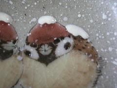 九谷焼 中村陶志人作 雪雀図 飾り盃