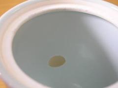 有田焼 しん窯 カール紅毛人二人用コーヒーポット
