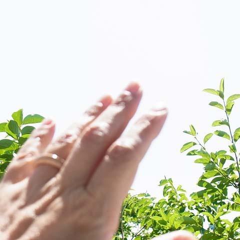 メモリアルリングに木の指輪を贈りませんか?